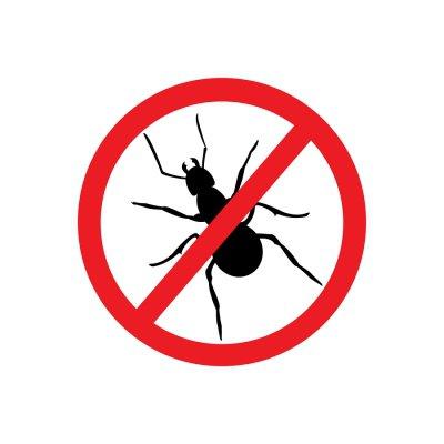 ant - pest - control
