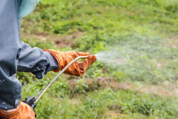 weed control service in dublin, ca