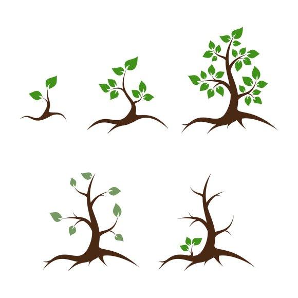 Diagnosing-Tree-Diseases