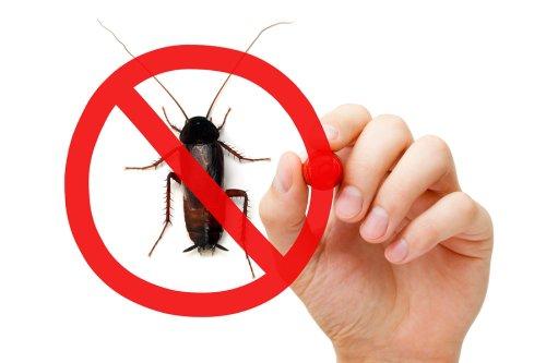 pest - control
