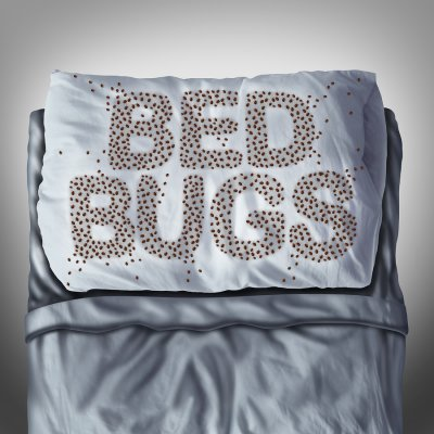 bed bugs in dublin, ca
