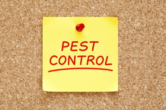 pest treatment plan in dublin, ca
